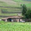 Ugsha, Imbabura